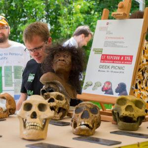 черепа древних предков человека
