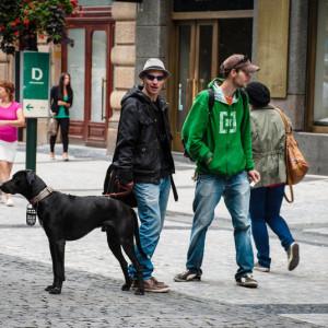 Молодые люди с черной собакой в центре Праги
